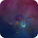 IC4603,                                Frank Turina
