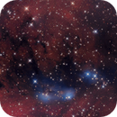 NGC 6914 Bluebird Nebula,                                Lyn Peterson