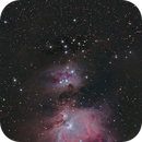 Comet 217P (LINEAR) with the Orion nebula complex,                                Tony Cook