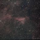 IC 1311 and associated nebulosity in Cygnus,                                Ian Dixon
