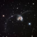 Antennae Galaxies NGC 4038/NGC 4039,                                Ricardo Pereira