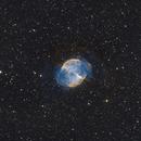 M27 - The Dumbbell Nebula,                                Adam Jaffe