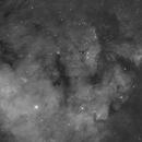 NGC 7822,                                Albert van Duin