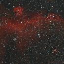 Seagull Nebula,                                Kevin Snedden