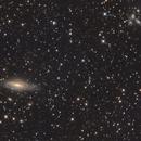 NGC 7331 & Stephan quintet,                                Filippo Verlezza