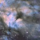 IC1318,                                Marcos Michel