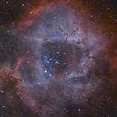 Colorful Rosette nebula,                                meeus
