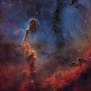 IC 1396 - Elephant's Trunk SHO (V2),                                Alan Pham