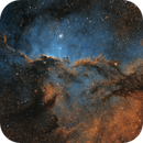 NGC 6188 The Fighting Dragons of Ara SHO,                                Tom Peter AKA Astrovetteman