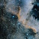 NGC 7000,                                Markus