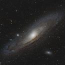M31 first light,                                Tom