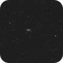 NGC 2336,                                Terrance