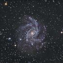 Fireworks Galaxy NGC 6946,                                Bob Stevenson
