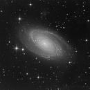 M81 Luminance,                                Thomas Kremser