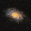 Triangulum Galaxy (M33),                                Juan P. Ramón