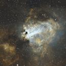 Omega Nebula,                                Mark Scrivener