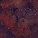 IC1396,                                churmey