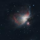 First Light of Orion Nebula,                                taylorhogan