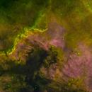 NGC-7000 North America Nebula,                                Miles Zhou