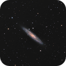 NGC253,                                MakikoSugimura