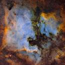 NGC7000 Nébuleuse Nord America  - IC5070 Nébuleuse du Pelican  -  SHO,                                Séb GOZE