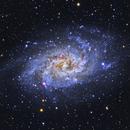 M 33 Triangulum Galaxy,                                Juan B. Torre Valle