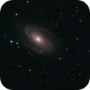 M81 and M82,                                Daniel