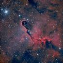IC1396 - The Elephant's Trunk Nebula,                                rmaestre