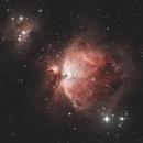 M42 Orion nebula,                                Luka_Faltis