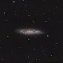M108 - Surfboard Galaxy - LRGB,                                Michael J. Mangieri