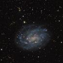 NGC 300 Spiral Galaxy,                                Miles Zhou