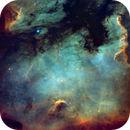 North America Nebula (NGC 7000): A New Processing Approach,                                Gary Lopez