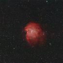 Monkey Head Nebula--NGC 2174,                                Alan Rockowitz