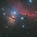 NGC 2023  LBN 954 Horsehead Nebula,                                Byron Miller