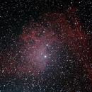 Flaming Star Nebula,                                Gardner D. Gerry