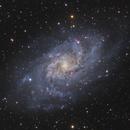 M33 - Triangulum Galaxy,                                Manfred Fellner
