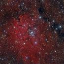NGC6823 - Nebula in Vulpecula,                                Stellario