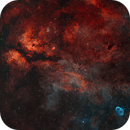 IC1318 HOO,                                Tayson