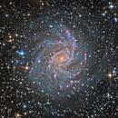 Fireworks Galaxy *without* intervening dust,                                KuriousGeorge