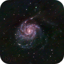 The Pinwheel Galaxy (M101),                                Josh Woodward