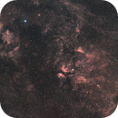 DSLR-H-Alpha and RGB in Cygnus,                                Wolfgang Zimmermann