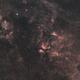 DSLR-H-Alpha and RGB in Cygnus,                                Wolfgang Zimmermann