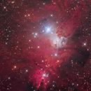 NGC 2264 - Christmas Tree Cluster & Cone Nebula,                                Yovin Yahathugoda