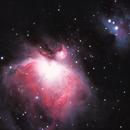 M42 - The Orion Nebula,                                T L Samuels