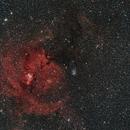 Cone Nebula Widefield,                                Jonathan W MacCollum