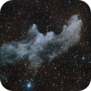 Witch Head Nebula,                                Richard Sweeney