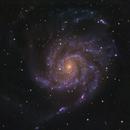 M101 - The Pinwheel Galaxy,                                Kyle Butler