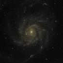 M101,                                PAF