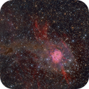 Cocoon Nebula,                                -Amenophis-