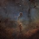 IC1396,                                DocRx